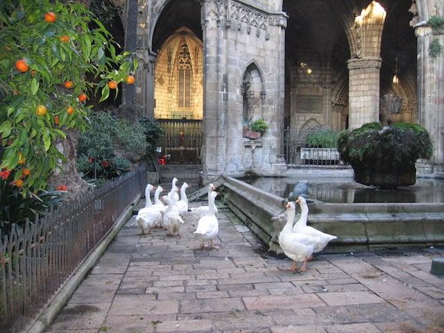 Cathédrale Sainte-Croix à Barcelone